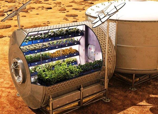 کشت سبزیجات در مریخ