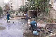 باز پیرایی فضای سبز مرکز نگهداری کودکانکار یاسر