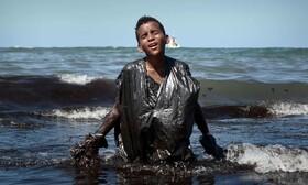 عکس روز: آلوده به نفت
