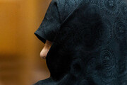 وضعیت پرونده نعمتزاده | دختر وزیر اسبق بازداشت است؟