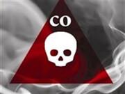 گازگرفتگی ۱۶۶۳ نفر از ابتدای پاییز در کشور | مرگ ۸۷ نفر