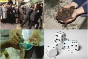 مشاغل عجیب و غریب دنیا | مورچهگیر، بوکننده گاو و دوشنده سم مار