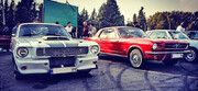 خودروهای تاریخی و کلاسیک در پیست آزادی گرد هم آمدند