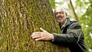 درختان هم زندگی اجتماعی دارند