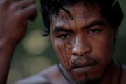 قتل فعال سرشناس حفاظت از جنگلهای آمازون