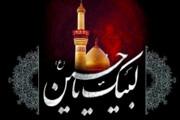 هیئتهای سبز منتخب تهران تقدیر میشوند