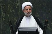 ذوالنور توضیح داد: عقیم سازی ایرانیان از طریق پوشک