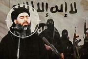 روسیه از مرگ البغدادی مطمئن نیست | دلایل مسکو