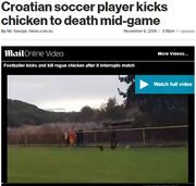 فیلم | کارت قرمز به بازیکن فوتبال به خاطر لگد زدن به مرغ