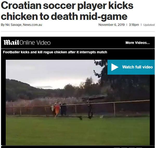 فوتبال مرغ