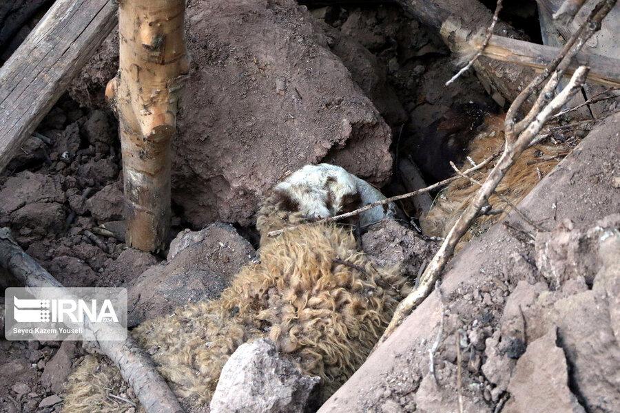 زلزله آذربایجان شرقی