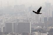 هشدار درباره آلودگی هوای همدان