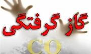 تهران در صدر آمار گازگرفتگی | بیشترین فوتیها در فارس و مازندران