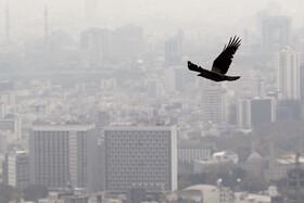۲۰ آبان؛شاخص ۱۱۸ برای هوای تهران | ناسالم برای گروههای حساس