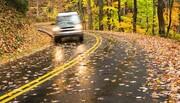 نکته بهداشتی: رانندگی ایمن در پاییز