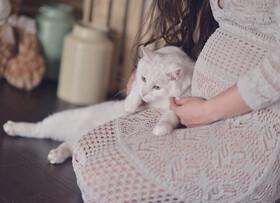نکته بهداشتی: نگهداری حیوانات خانگی در بارداری