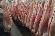 گوشت تازه گوسفندی با قیمت تعادلی در بیرجند توزیع میشود