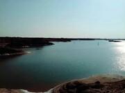 فیلم | ظهور معجزهآسای دریاچهای جوان در میان کویر لوت