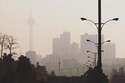 گشتهای شبانه محیط زیست در تهران به راه افتاد