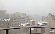 عروسانه میآید از آسمان | برف شهروندان تهرانی را خوشحال و غافلگیر کرد