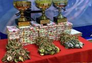 سیامین دوره مسابقات قهرمانی کشوری نینجوتسو به میزبانی استان البرز برگزار شد