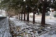 تصاویر: نخستین برف پاییزی در همدان