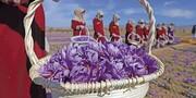 روز ملی زعفران در تقویم افغانستان