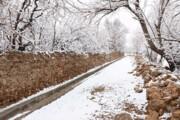 کاهش ۱۲ درجهای دمای هوا در شرق کشور | بارشها تا اوایل هفته آینده ادامه دارد