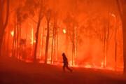 هشدار وضعیت فاجعه در جنوب استرالیا