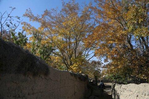 مناظر پاییزی روستای نوفرست