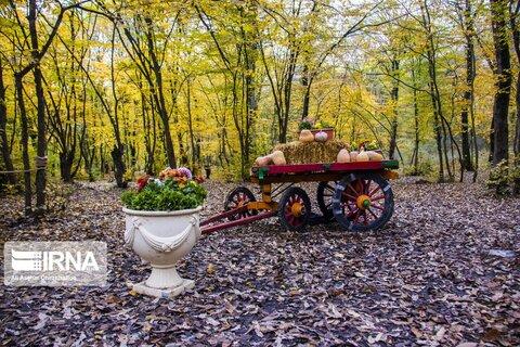 دومین جشنواره پاییز هزار رنگ گرگان