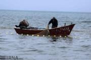 مشاهده گونه جدیدی از «شانهدار خوار» در دریای خزر