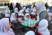 سرانجام توزیع شیر در مدارس