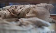 مجموعه تصاویر | کشف مومیایی شیر در مصر
