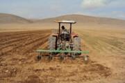کشاورزان از زمان طلایی برای کشت گندم و جو استفاده کنند