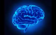 سرد شدن مغز چه بلایی سرتان میآورد؟