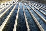 ۳۵۲ میلیارد ریال تسهیلات اشتغال پایدار روستایی در کهگیلویه و بویراحمد پرداخت شد