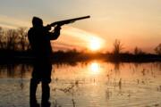 شکارچیان غیرمجاز گیلان زیر تیغ قانون