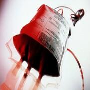 فیلم | حرفهای بازیگری که ۱۵۹ بار خون اهدا کرده است