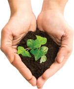 خاک را زخمی نکنیم!