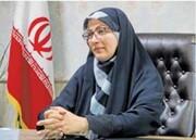 فیلم | فرماندار شهر قدس تهران: من دستور تیر دادم