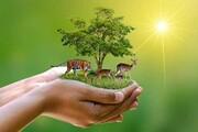 کنفرانسی برای مدیریت حیات وحش، اخلاق زیستمحیطی و جامعهشناسی