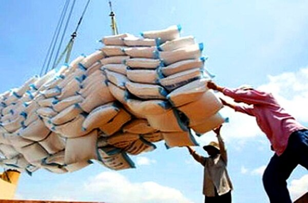 ورادات برنج