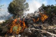 تکلیف رصد آتشسوزی جنگلها با گران شدن بنزین | گشتها زمینگیر میشوند؟