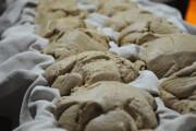 تولید ۳۰ تن شکر سیاه در گیلان