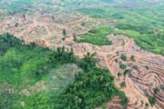 شیب زیاد زمین عامل اصلی فرسایش خاک کشاورزی در خراسان شمالی