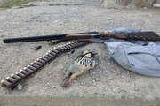 شکارچی کبک در مشگینشهر دستگیر شد