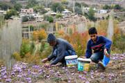 سیاستها باید در جهت ماندگاری جمعیت در روستاها باشد