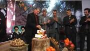 «کنی» ها میزبان جشن خرمالوی پایتخت