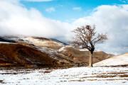 تصویر | برف پاییزی در ارتفاعات قزوین